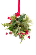 stock-photo-2183775-mistletoe